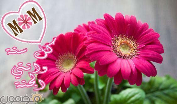 أحبك أمي 1 اجمل صور بوستات عيد الأم للفيس