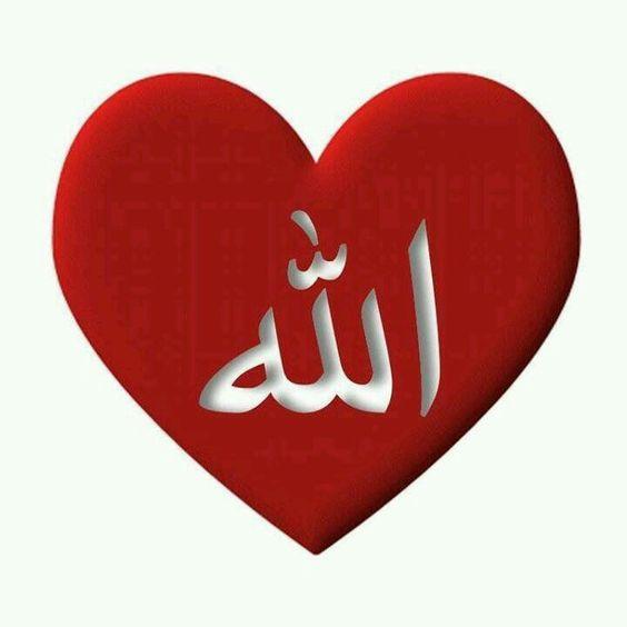 الله في قلب صور الله لفظ الجلالة جل جلاله وتعالى شأنه