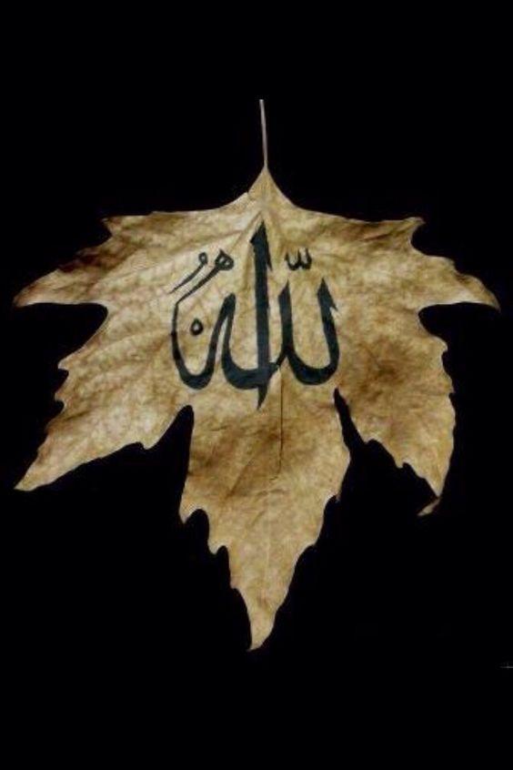 الله لفظ الجلاه صور الله لفظ الجلالة جل جلاله وتعالى شأنه