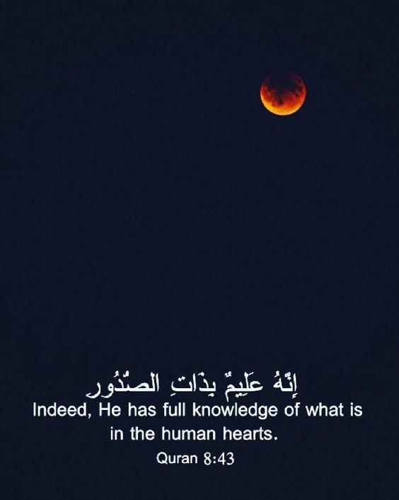 انه عليم بذات الصدور صور دينية آيات من القرآن الكريم روعة للفيسبوك