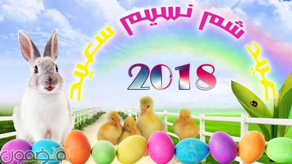 بوستات شم النسيم 12 خلفيات شم النسيم 2018 Happy Easter