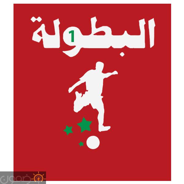 ترتيب الدوري المصري جدول الترتيب العام