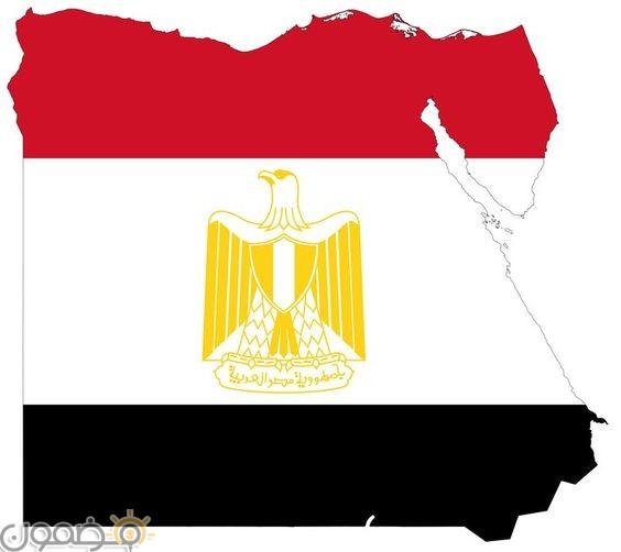 خلفيات علم مصر 2018 11 صور خلفيات علم مصر للموبايل للفيس 2021
