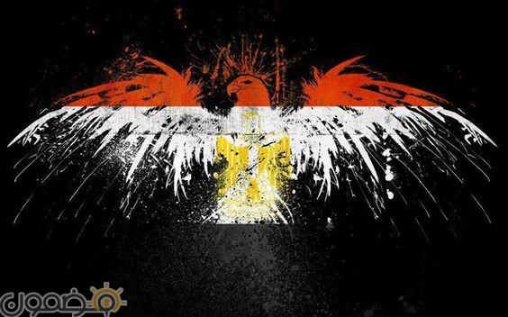 خلفيات علم مصر 2018 12 صور خلفيات علم مصر للموبايل للفيس 2021