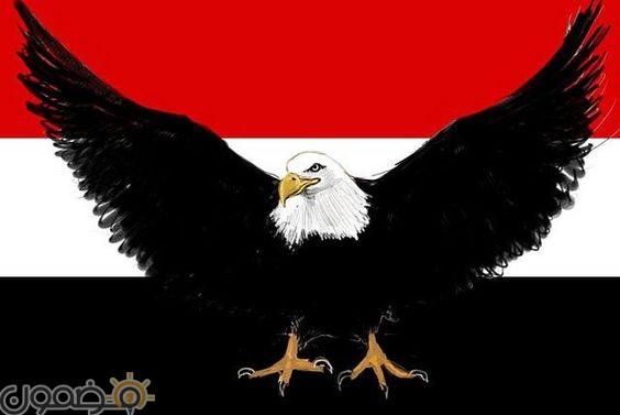خلفيات علم مصر 2018 13 صور خلفيات علم مصر للموبايل للفيس 2021