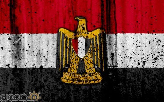 خلفيات علم مصر 2018 15 صور خلفيات علم مصر للموبايل للفيس 2021