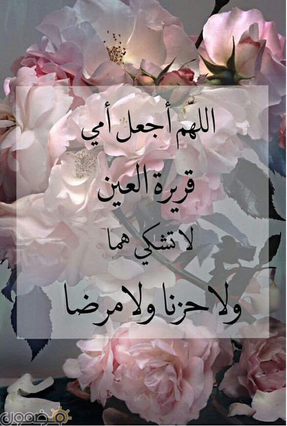 رسائل عيد الام مصرية رسائل عن التسامح جديدة 2021
