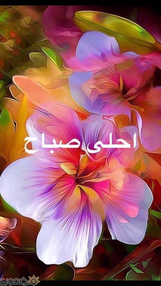 صباح الخير مصريه رسائل ومسجات صباح الخير 2018 جديدة