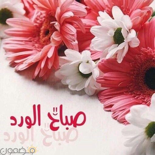 صباح السعادة 4 اجمل صور صباح السعادة للفيس بوك