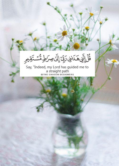 صراط مستقيم صور دينية آيات من القرآن الكريم روعة للفيسبوك