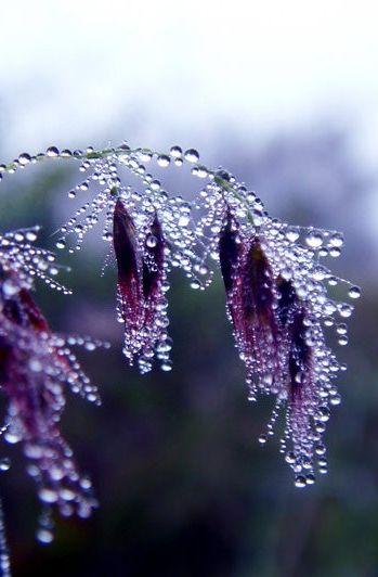 صور أمطار جديدة صور مطر فصل الشتاء رومانسية جميلة للفيس بوك