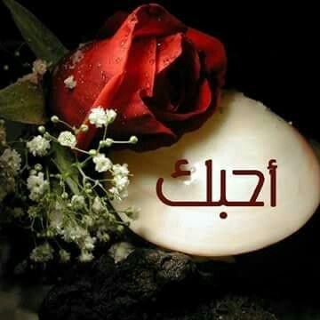 صور بحبك جدا صور بحبك رومانسية عبارات حب أجمل بوستات