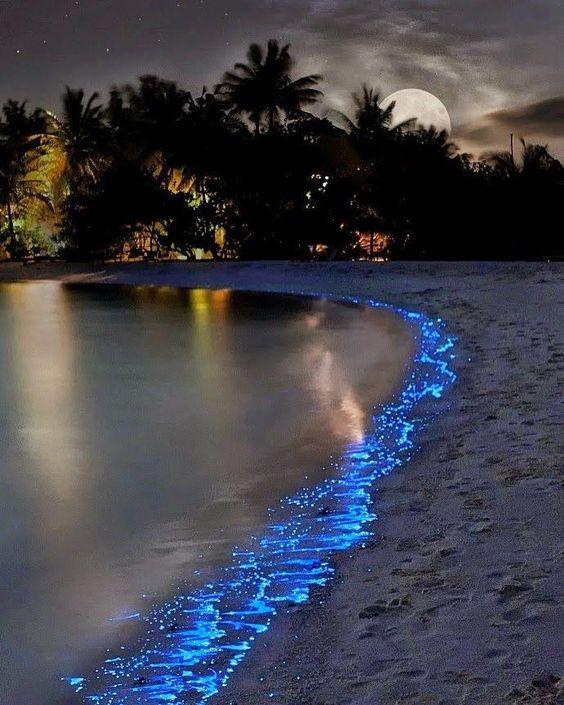 صور بحر ليلا صور البحر اروع خلفيات طبيعية خلابة