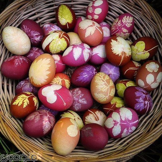 صور بيض شم النسيم 1 1 صور بيض شم النسيم الملون فيس بوك