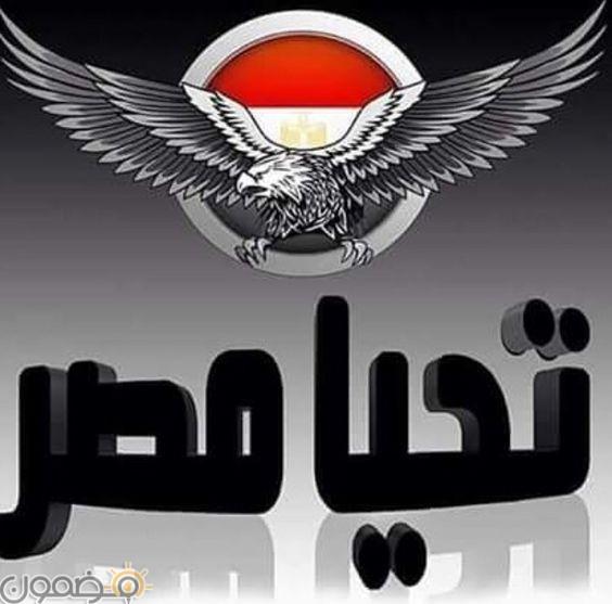 صور تحيا مصر السيسي 10 صور تحيا مصر السيسي للفيس 2021