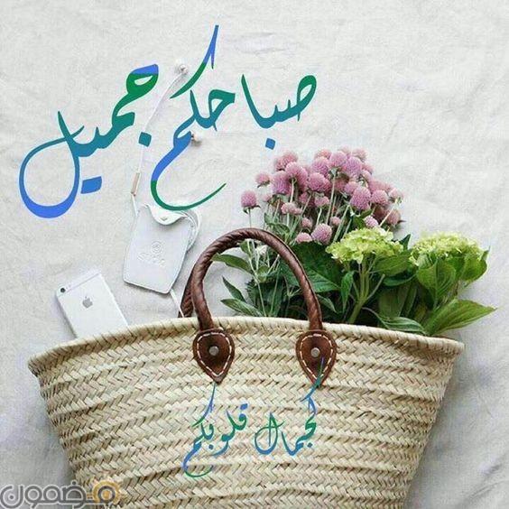 صور حلوة للصباح 11 صور حلوة للصباح صباحكم جميل