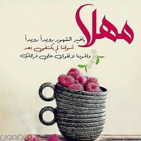 صور دعاء شهر رمضان 8 صور دعاء شهر رمضان رسائل و عبارات