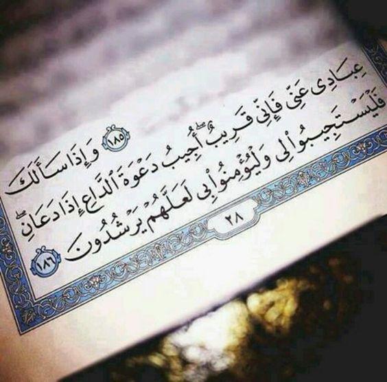 صور دينية سؤال صور دينية آيات من القرآن الكريم روعة للفيسبوك