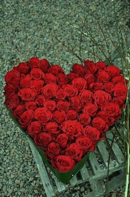 صور رومانسية قلب ورد صور رومانسية كيوت للعاشقين حب كبير