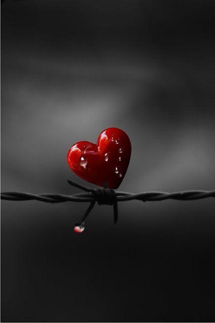 صور رومانسية للجوال صور رومانسية كيوت للعاشقين حب كبير