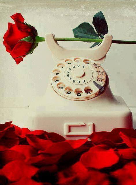 صور رومانسية وردة صور رومانسية كيوت للعاشقين حب كبير