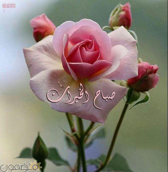 صور صباح الخير قلب 8 صور صباح الخير حبيبي قلب رومانسية
