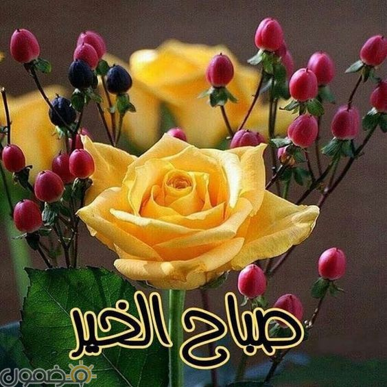 صور صباح الخير قلب 9 صور صباح الخير حبيبي قلب رومانسية