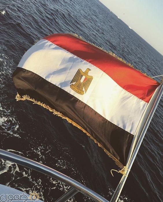 صور علم مصر السيسي 2018 12 صور علم مصر السيسي 2018