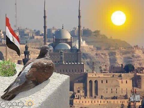 صور علم مصر السيسي 2018 13 صور علم مصر السيسي 2018