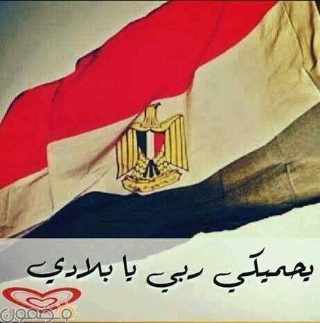 صور علم مصر السيسي 2018 6 صور علم مصر السيسي 2018
