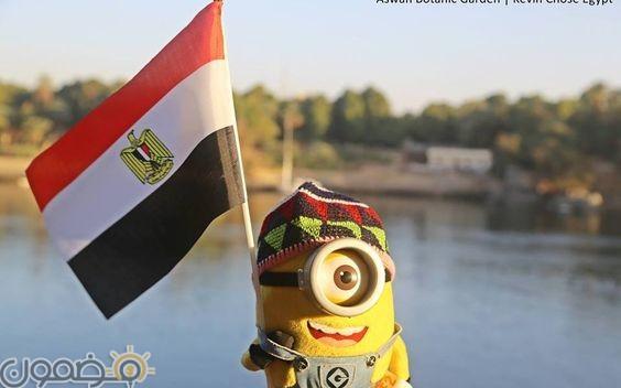 صور علم مصر السيسي 2018 7 صور علم مصر السيسي 2018