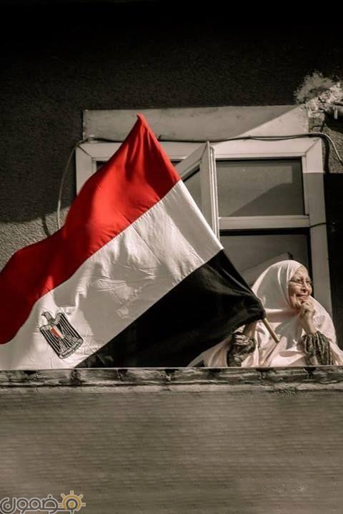 صور علم مصر السيسي 2018 8 صور علم مصر السيسي 2018