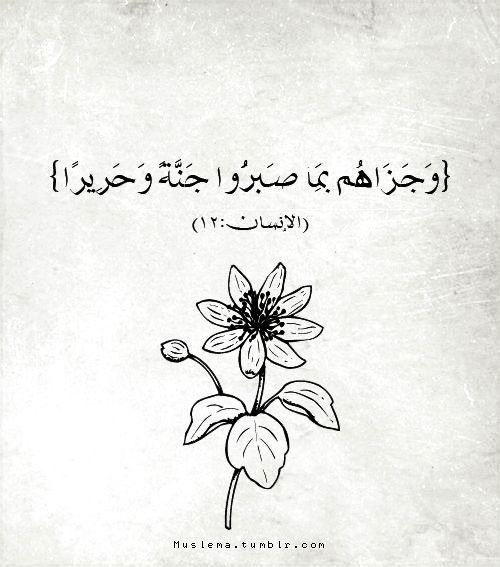 صور عن الصبر قرآن 2 صور عن الصبر عليها عبارات روعه للفيس