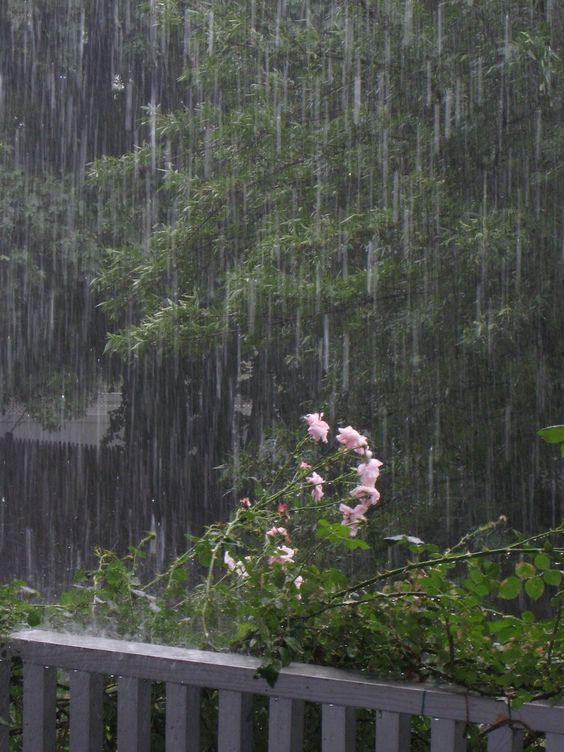 صور مطر جديدة صور مطر فصل الشتاء رومانسية جميلة للفيس بوك
