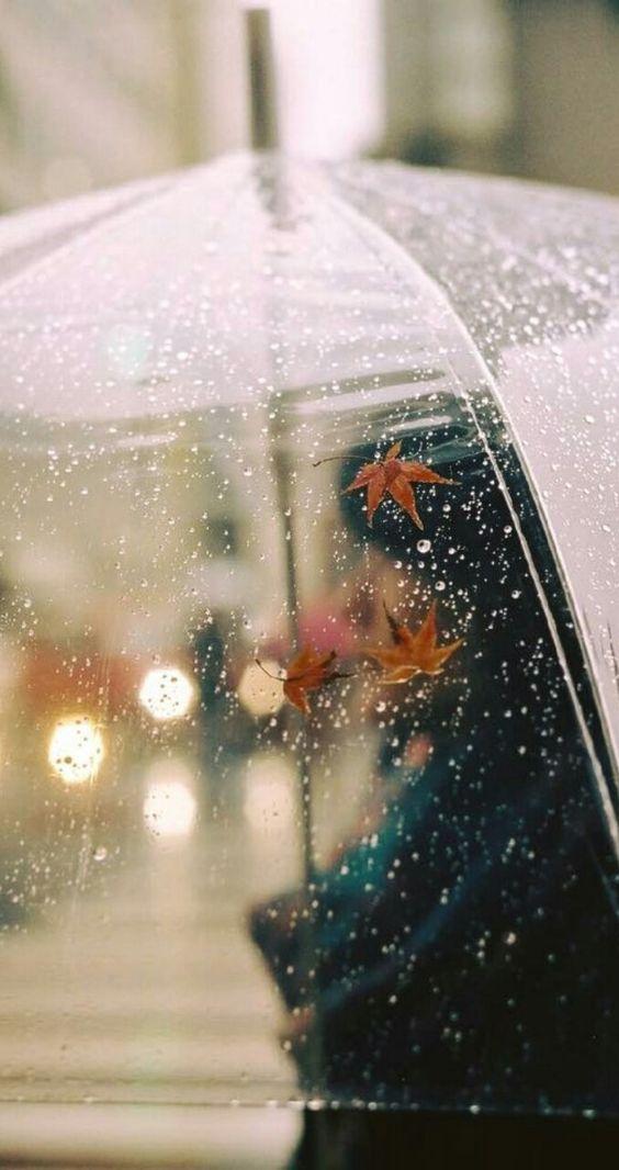 صور مطر شمسية صور مطر فصل الشتاء رومانسية جميلة للفيس بوك