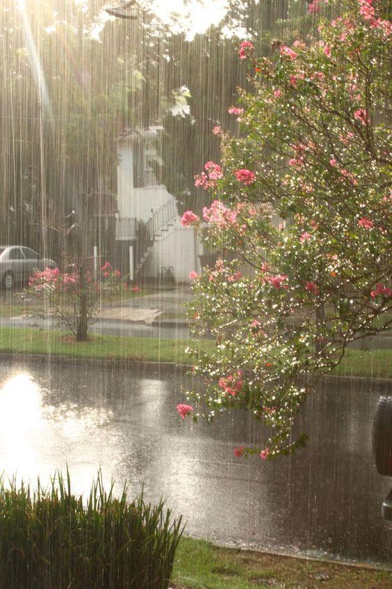 صور مطر شوارع صور مطر فصل الشتاء رومانسية جميلة للفيس بوك