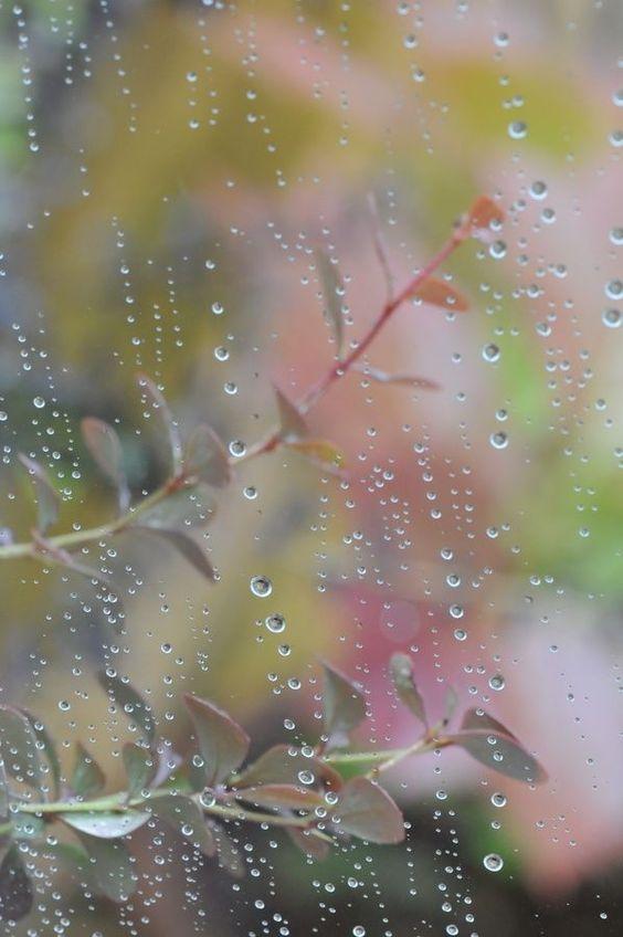 صور مطر كيوت صور مطر فصل الشتاء رومانسية جميلة للفيس بوك