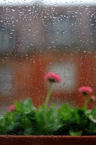 صور مطر للتصميم صور مطر فصل الشتاء رومانسية جميلة للفيس بوك