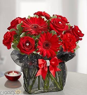 صور ورد احمر 1  صور بوكيه ورد احمر طبيعي حب