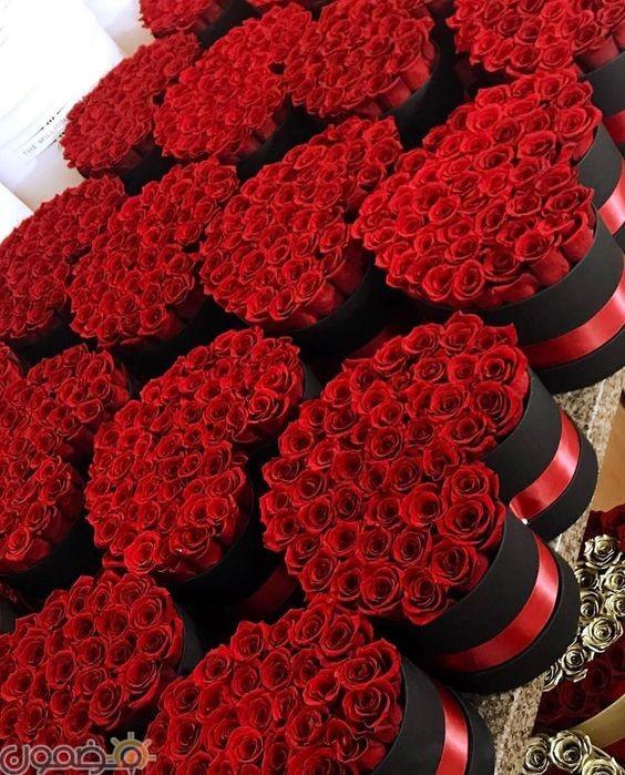 صور ورد احمر 12  صور بوكيه ورد احمر طبيعي حب