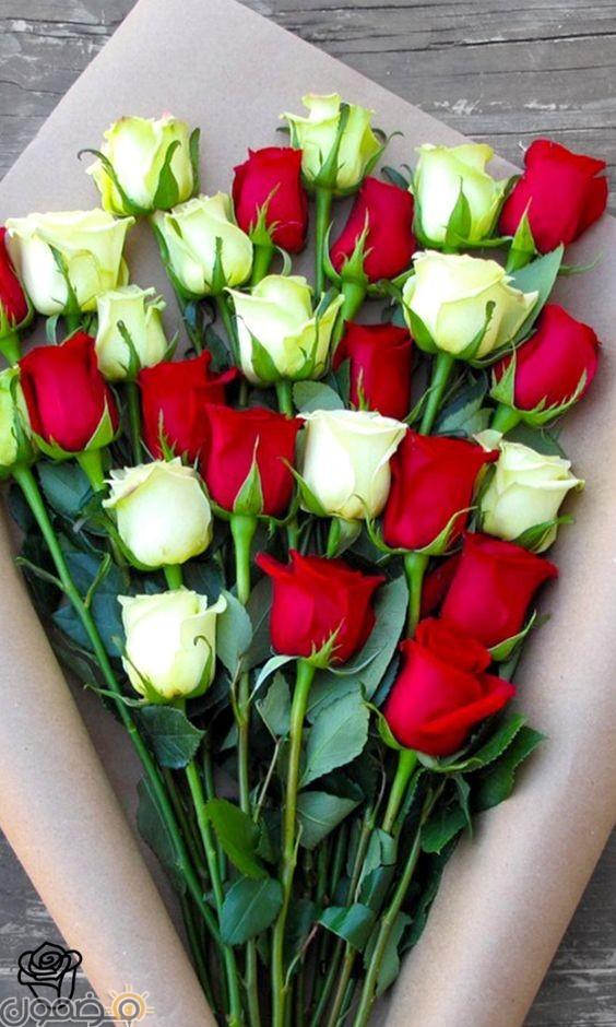 صور ورد احمر 17  صور بوكيه ورد احمر طبيعي حب