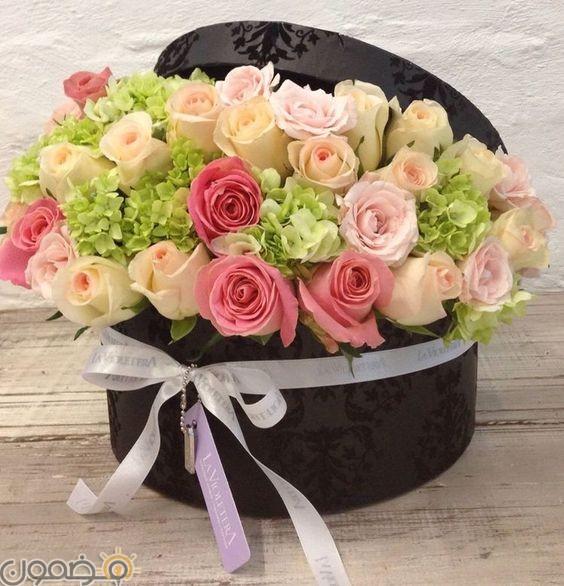 صور ورد الجوري 14 صور ورد الجوري الوردي فيس بوك