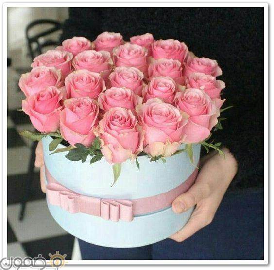 صور ورد الجوري 2 صور ورد الجوري الوردي فيس بوك