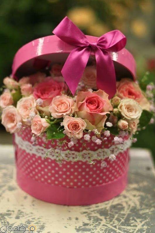 صور ورد الجوري 7 صور ورد الجوري الوردي فيس بوك