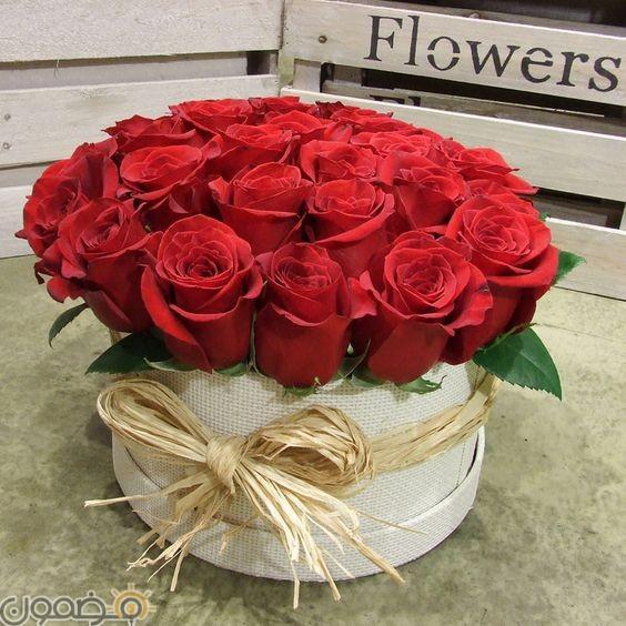 صور ورد الجوري 8 صور ورد الجوري الوردي فيس بوك