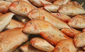 طريقة عمل السمك البربوني