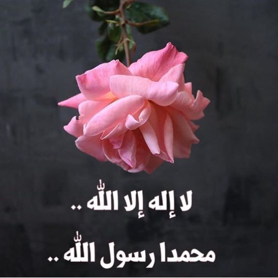 لا اله الا الله 15 صور لا اله الا الله أفضل الذكر كلمة التوحيد