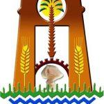 محافظة الوادي الجديد