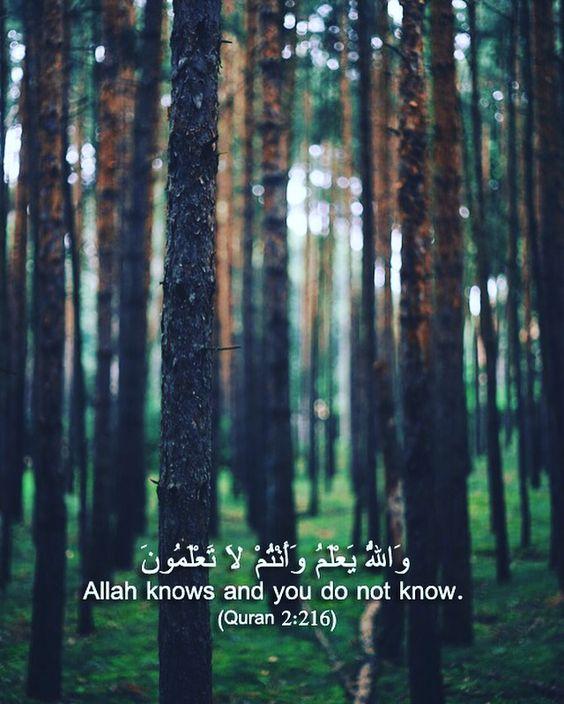 والله يعلم وانتم لا تعلمون صور دينية آيات من القرآن الكريم روعة للفيسبوك