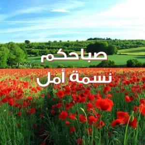 صباحكم نسمة امل 300x300 صور صباح الخير أسعد الله صباحكم بكل خير